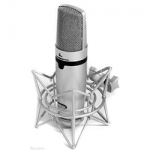 voice over mics Miktek C7