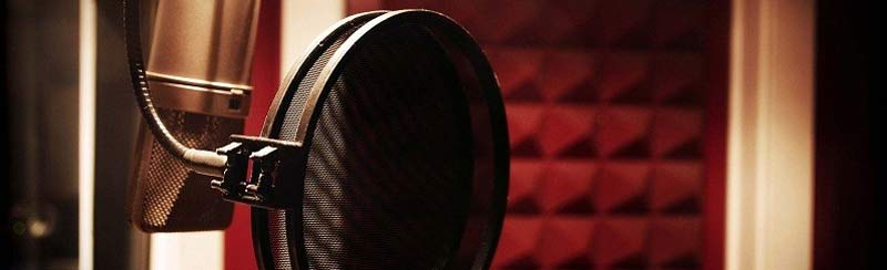 voice over industry